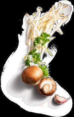 Bean sprouts / Mushroom / Garlic